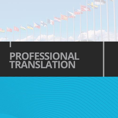 Prof_Translation_Hover