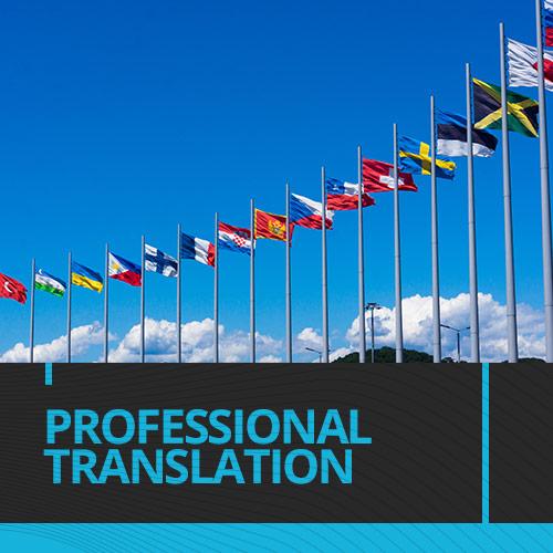 Prof_Translation_Icon